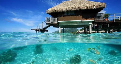 Our King Panoramic Overwater Bungalow