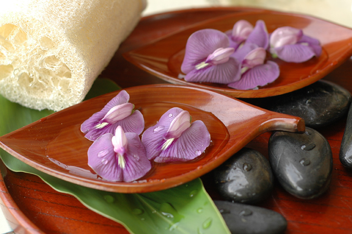 Hot Stone Massage at the Spa Retreat for One